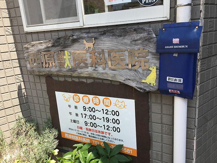 西原獣医 福岡市糸島